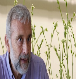 Speaker for plant science conferences - Pierre Chagvardieff